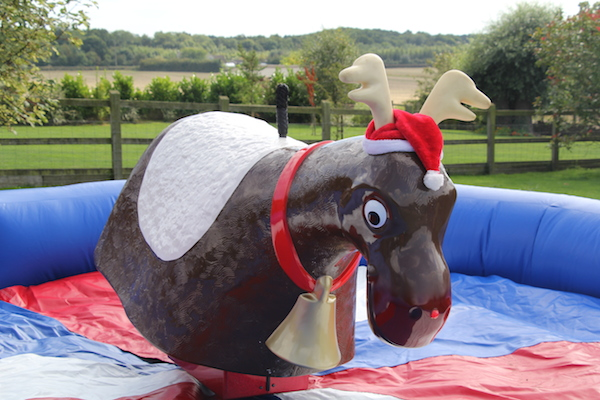 Rodeo Reindeer Devon
