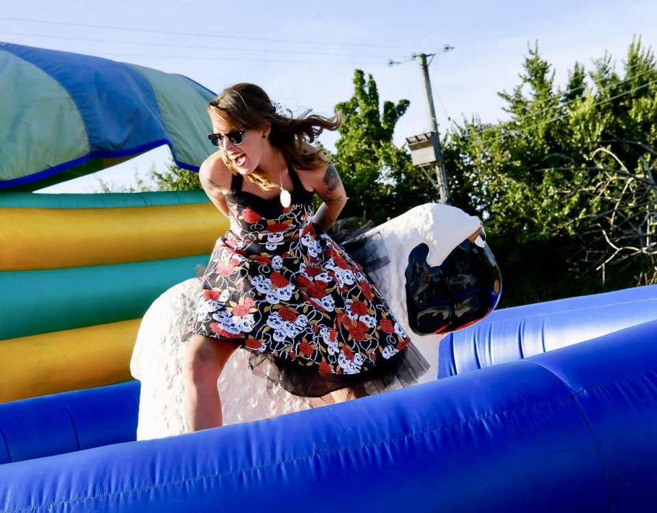 Rodeo Sheep Hire Exeter
