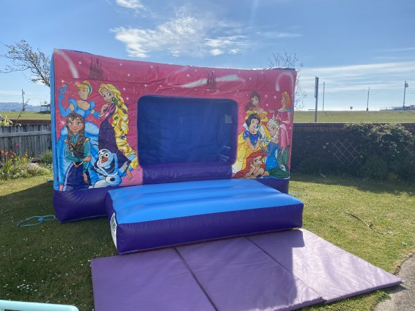 Princess Disco Bouncy Castle Hire Newton Abbot