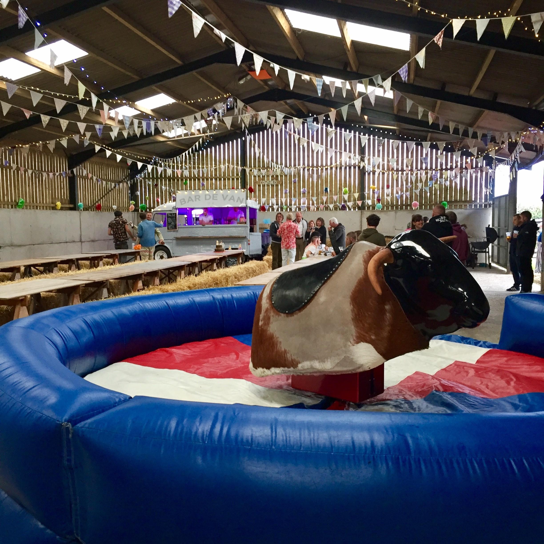 Rodeo Bull Hire Devon